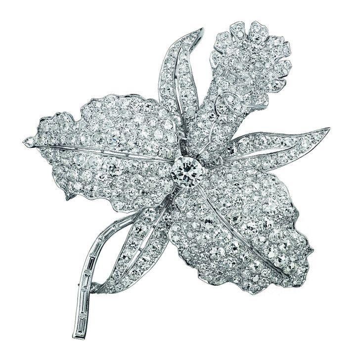 Van Cleef & Arpels : clip orchidée de 1927  (Van Cleef & Arpels)