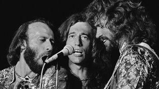 Les Bee Gees en 1979 à Miami. De gauche à droite, Maurice, Robin et Barry Gibb  (Phil Sandlin / AP / SIPA)