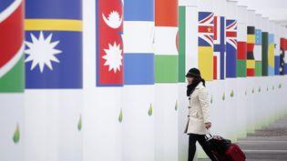 Une participante arrive près de l'entrée de la salle où se tient la 21e conférence des parties sur le climat, la COP21, au Bourget (Seine-Saint-Denis), le 29 novembre 2015. (STEPHANE MAHE / REUTERS)