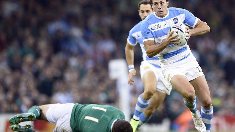 L'Argentin Juan Imhoff lors du quart de finale Argentine-Irlande de la coupe du monde de rugby,à Cardiff, le 18 octobre 2015. (DAMIEN MEYER / AFP)