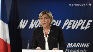 Marine Le Pen présidente ses voeux à la presse le 4 janvier 2017 (ALAIN JOCARD / AFP)