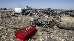 Des débris de l'Airbus A321 de la compagnie russe Metrojet éparpillés dans le désert du Sinaï (Egypte), le 1er novembre 2015. (KHALED DESOUKI / AFP)