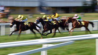 Une course de chevaux (photo archives) (ULI DECK / DPA)