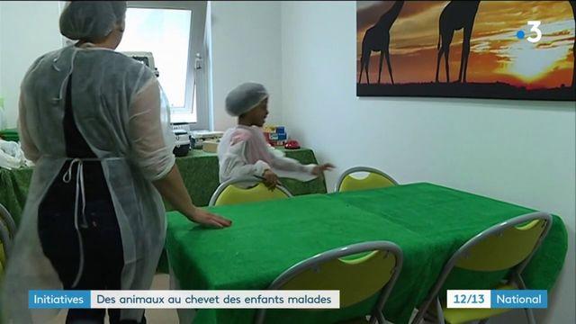 Santé : des animaux viennent en aide aux enfants malades