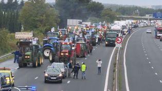 Manifestations agriculteurs (France 2)