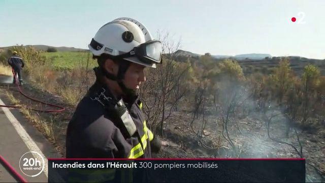 Hérault : 300 pompiers mobilisés contre le feu