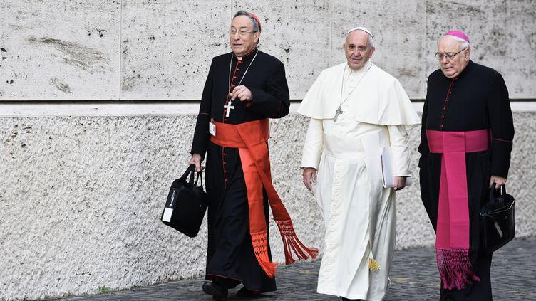 Le pape François au Vatican, le 13 octobre 2014. (MASSIMO VALICCHIA / NURPHOTO / AFP)