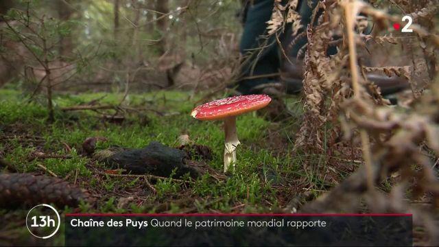 Chaîne des Puys : quand le patrimoine mondial rapporte