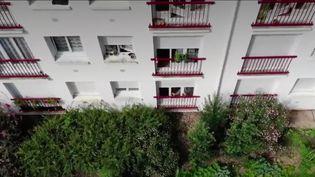 Depuis le confinement, de nombreux Français cultivent un bout de terre en plein centre-ville.À Nantes (Loire-Atlantique), au pied des tours d'immeubles, ce sont plus de2hectares qui ont été transformés en potager.La récolte est au rendez-vous. (France 2)