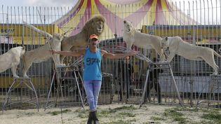 Frédéric Edelstein en compagnie de ses célèbres lions blancs, à Marseille (Bouches-du-Rhône), le 26 mars 2017. (SPEICH FR?D?RIC / MAXPPP)