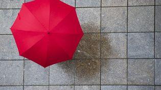 Un passant sous un parapluie, en mai 2013. (DANIEL BOCKWOLDT / DPA / AFP)