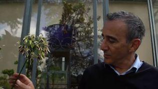 Élie Semoun dans son jardin, en banlieue parisienne. (FRANCE 2)