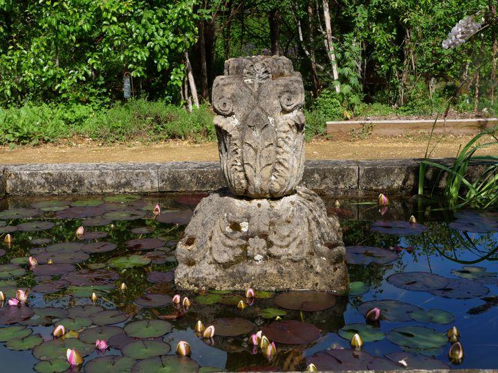 Un des bassins des Jardins de Cadiot. Le crapaud flûte mâle peut venir y déposer ses œufs. (ISABELLE MORAND / RADIO FRANCE / FRANCE INFO)