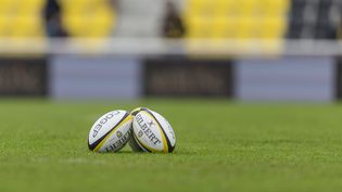 Un ballon de rugby (photo d'illustration). (DENIS TRASFI / MAXPPP)