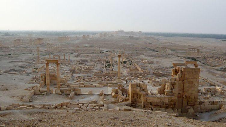 """(La cité antique de Palmyre en 2010. D'après, le directeur des Antiquités de Syrie, les djihadistes """"ont tué Palmyre"""". © REUTERS)"""