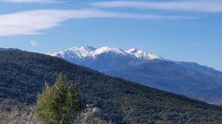 L'ourse Sarousse avait été introduite dans le massif, côté français, en 2006. (ici, le massif du Canigou, dans les Pyrénées-Orientales) (SÉBASTIEN BERRIOT / FRANCE-BLEU ROUSSILLON)
