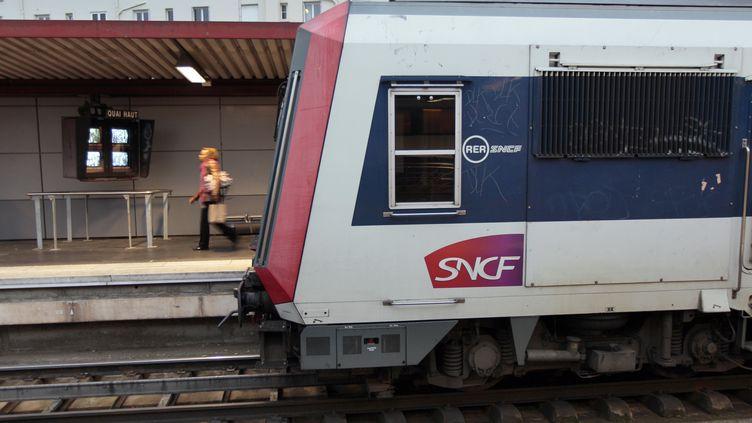 Un RER en Gare du Nord à Paris, le 8 novembre 2011. (JACQUES DEMARTHON / AFP)