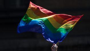 Un drapeau LGBT brandi lors de la Marche des fiertés à Paris, le 24 juin 2017. (MAXPPP)