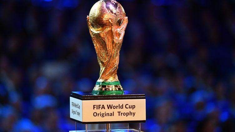 Le trophée Jules-Rimet remporté par les vainqueurs de la Coupe du monde, le 12 janvier 2017 à Moscou (Russie). (VLADIMIR PESNYA / SPUTNIK)