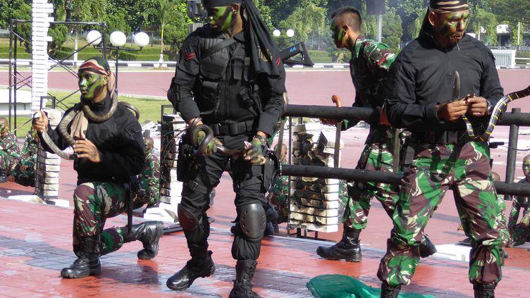 Les soldats des forces spéciales indonésiennes font unedémonstration avec des cobras dansles mains devantle ministre américainde la Défense Jim Mattis, le 24 janvier 2018 à Jakarta (Indonésie) (SYLVIE LANTEAUME / AFP)