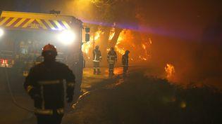 Des pompiers luttent contre un feu de forêt, le 24 juillet 2017, à Biguglia (Haute-Corse). (PASCAL POCHARD-CASABIANCA / AFP)