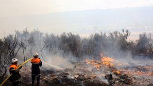 Des pompiers luttent contre l'incendie qui s'est déclenché à Moux, dans l'Aude, entre Narbonne et Carcassonne, samedi 24 juillet. (BOYER CLAUDE / MAXPPP)