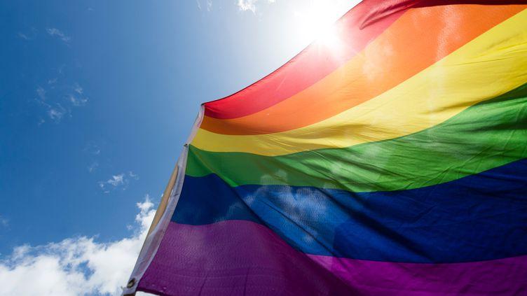 La communauté LGBT s'inquiète des propos du pape associant l'homosexualité à unemaladie psychiatrique. (GREGOR FISCHER / DPA)