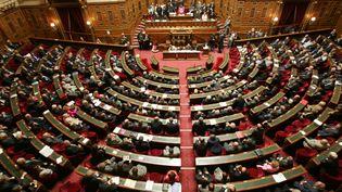 Vue générale du Sénat à Paris. (PIERRE ANDRIEU / AFP)