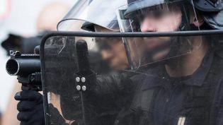 (Des policiers équipés des très contestés flash-ball © MAXPPP)