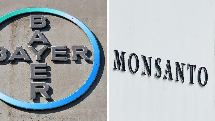 Les logos Bayer et Monsanto. (PATRIK STOLLARZ / AFP)