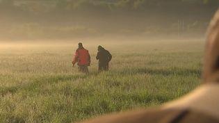 En Allemagne, à l'heure des moissons, les agriculteurs font tout pour protéger les petits faons que les moissonneuses risquent de tuer.Pour les sauver, ils ont recours à des drones capables de détecter la chaleur animale. (CAPTURE ECRAN FRANCE 2)