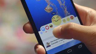 Capture d'écran des nouveaux émojis de Facebook, le 8 octobre 2015. (FACEBOOK)