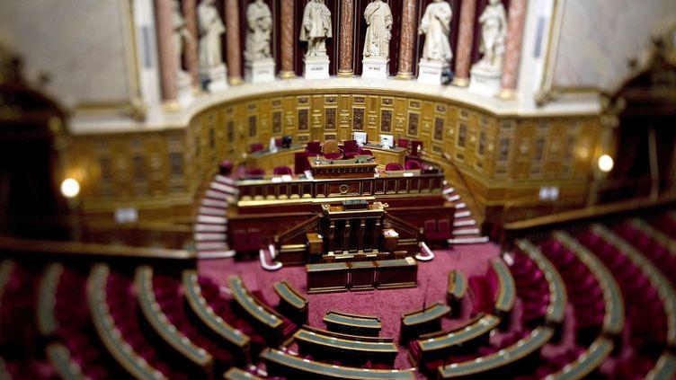 Affrontements politiques en perspective dans l'hémicycle du Sénat, qui examine une proposition de loi sur le droit de vote des étrangers non communautaires aux municipales, jeudi 7 décembre 2011. (JOEL SAGET / AFP)