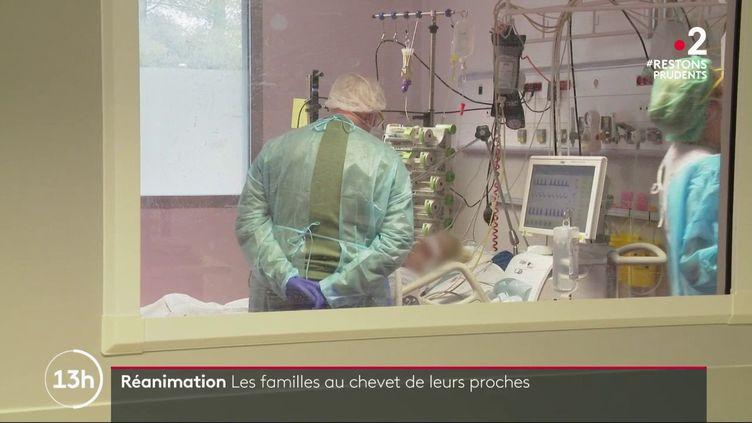 Coronavirus : des bénévoles pour accueillir les visiteurs dans les services de réanimation (FRANCE 2)