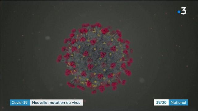 Coronavirus : une mutation et des questions