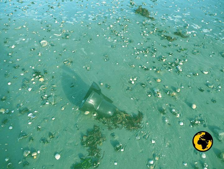 Un plot en plastique provenant d'une exploitation de moules de bouchot, dans la baie du Mont-Saint-Michel. (DR)