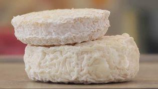 Le picodon, un petit fromage de chèvre, est produit en Ardèche et dans la Drôme. (CAPTURE D'ÉCRAN FRANCE 2)