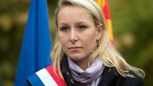 Marion Maréchal-Le Pen, le 23 octobre 2016 àLa Tour-d'Aigues (Vaucluse), lors d'un rassemblement contre l'accueil des migrants. (BERTRAND LANGLOIS / AFP)