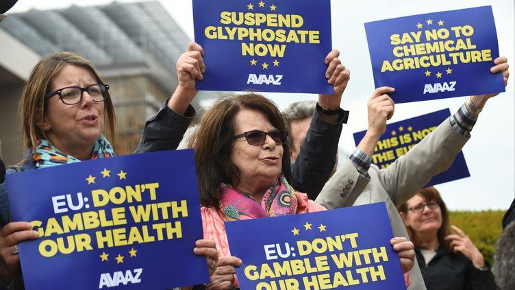 Des manifestants à Bruxelles contre leglyphosate, le 18 mai 2016. (JOHN THYS / AFP)