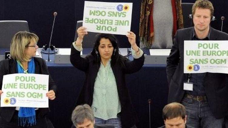 Des députés européens écologistes demandent une Europe sans OGM lors d'une séance au parlement de Strasbourg (9 mars 2010). (PATRICK HERTZOG / AFP)