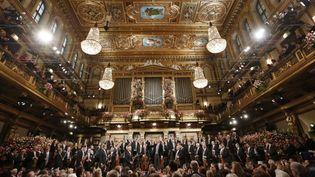 Le concert du Nouvel An 2013 à Vienne  (DIETER NAGL / AFP)
