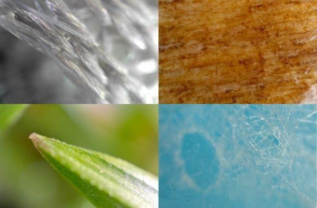 """De gauche à droite : photo avec la """"lentille microscope"""" de l'Oppo Find X3 Pro d'un fauteuil de bureau, d'une chaise en bois, d'un brin d'herbe et d'un masque chirurgical. (Faustine Mazereeuw)"""