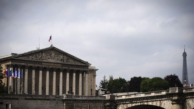 Vue de l'Assemblée nationale, le 15 juin 2015 à Paris. (JOEL SAGET / AFP)