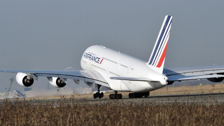Un A380 d'Air France, à l'aéroport de Roissy-Charles-de-Gaulle (Val-d'Oise), le 20 novembre 2009. (ERIC PIERMONT / POOL / AFP)