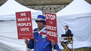 Un homme proteste devant le parlement britannique le 15 novembre 2018 contre l'accord négocié par Theresa May avec l'Union européenne sur le Brexit. (MAXPPP)