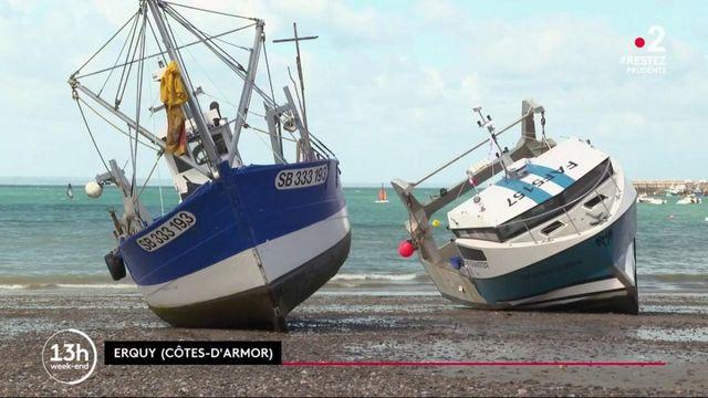 Côtes-d'Armor : le combat des pêcheurs contre un projet de parc éolien