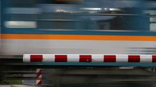 Un train régional passe près d'un passage à niveau en Allemagne, le 11 juillet 2017. (KARL-JOSEF HILDENBRAND / AFP)