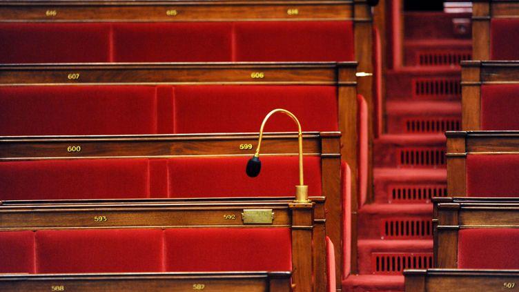 L'hémicycle vide de l'Assemblée nationale, le 25 novembre 2008, à Paris. (LIONEL BONAVENTURE / AFP)