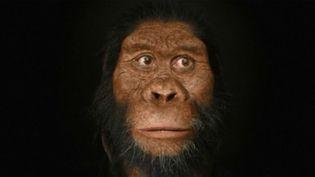 L'australopithèque anamensis vivait en Éthiopie. (FRANCE 2)