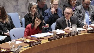 Le Conseil de sécurité de l'ONU, le 7 avril 2017, à New York (Etats-Unis). (LUIZ RAMPELOTTO / EUROPANEWSWIRE / AFP)